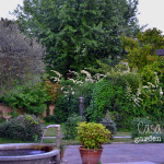 casacountry_garden_sunset_3